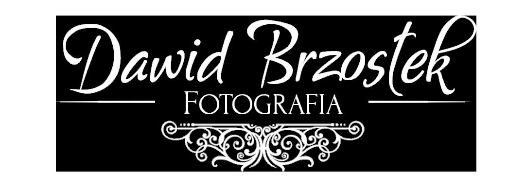 Fotograf Ślubny Wysokie Mazowieckie – Dawid Brzostek Fotografia